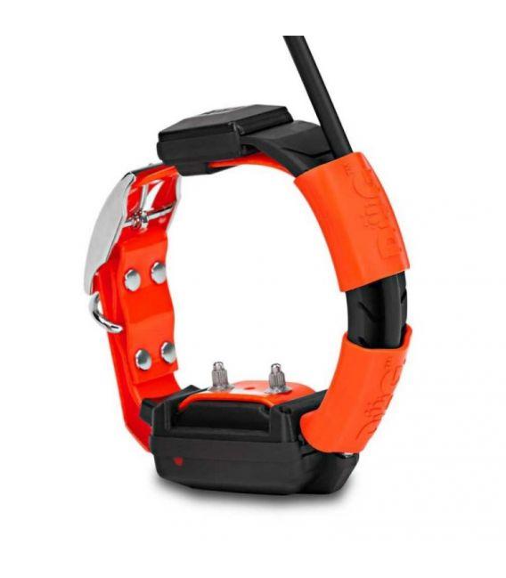 Collar adicional GPS DOGTRACE X30-T (Con módulo educativo)