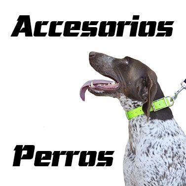 Accesorios para perros de caza. Comprar online